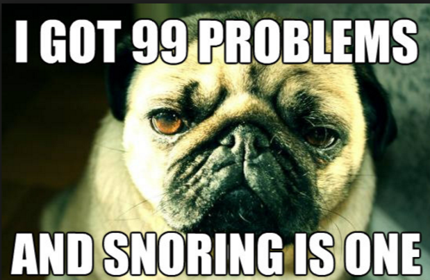 pugs snoring too snoring meme all top funny snoring jokes on one page top snoring solution
